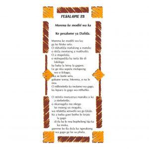 Pesalome 23